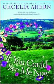 If You Could See Me Now by Cecelia Ahern ... she is s great chick lit author