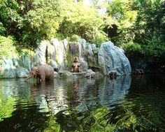 Jungle Cruise by DolceDanielle, via Flickr