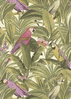 Wallpaper Parrots 13BA2202