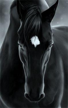 black horse painting