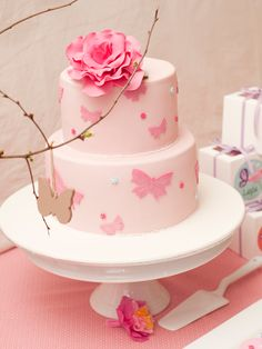 Pretty Pale Pink Girl's Birthday Cake with Butterflies