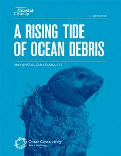 Ocean Conservancy's report A Rising Tide of Ocean Debris and What We Can Do About It reveals all the findings of the 2008 Cleanup in its one-of-a-kind Marine Debris Index, the world's only country-by-country, state-by-state breakdown of trash in our ocean, lakes, rivers, and streams: http://www.rivernetwork.org/sites/default/files/A_Rising_Tide_full_lowres.pdf