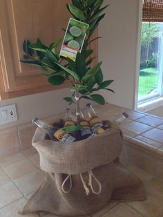 Lime tree and  coronas house warming gift