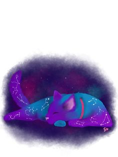 a cat with all the zodiac constellations~by me