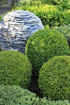 Stone Orb Sculpture Mimics The Boxwood Shrubs Cut In Orb Shapes. These Are  Easy To Grow U0026 Stay Green Year Round. Recommend For Any Landscape