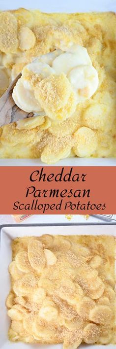 Cheddar Parmesan Scalloped Potatoes makes a great Thanksgiving side dish. If you need a potluck side dish idea for the holidays full of cheese & deliciousness, this is it! Potluck Side Dishes, Best Side Dishes, Thanksgiving Side Dishes, Oven Roasted Potatoes, Parmesan Potatoes, Cheddar, Baking Recipes, Top Recipes, Side Recipes