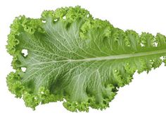 Mustard greens help prevent cancer in organ and glands lined with epithelial tissue due to its high vitamin A content.