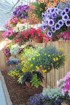 Gorgeous Display of Flowers