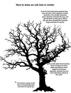 """""""how to draw a tree""""-remember these tips when we draw outside."""