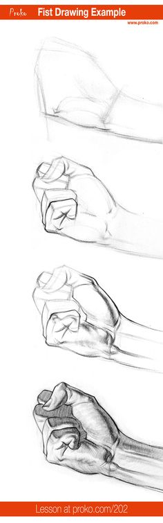 Here's an example of how to draw a fist. More anatomy lessons at proko.com/library