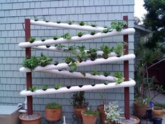 Small Dual Rain Tower Hydroponic System Home Made