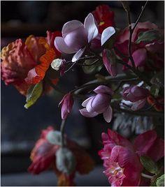 Pamela Jaccarino_Instagram #dsfloral Flowers, Plants, Blog, Instagram, Flora, Royal Icing Flowers, Floral, Plant, Florals