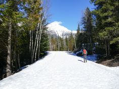 Go cross-country skiing on Going to the Sun Road in Glacier National Park. What a Montana travel experience!