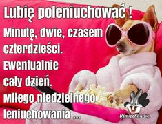 Humor, Good Morning Funny, Humour, Cheer, Funny Humor, Jokes