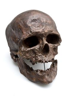 Cro-Magnon 1 skull This is a 32,000-year-old skull discovered in 1868 in Cro-Magnon rockshelter, Les Eyzies, France. 'Cro-Magnon Man' is commonly used for the modern humans that inhabited Europe from about 40,000 to 10,000 years ago. - See more at: http://australianmuseum.net.au/image/Cro-Magnon#sthash.rGElgY9l.dpuf