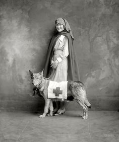 """Shorpy Historic Picture Archive :: Red Cross Dog: 1917 """"Miss Carter Mullikin, Holton-Arms School."""" high-resolution photo"""