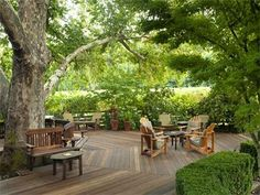outdoor deck around Leche tree and/or Oak tree??
