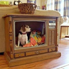 Need an indoor doghouse? fingers crossed this is how i get my tv to look... or even cuter!! it is for Bambs & Bettie after all... ;) ~sch