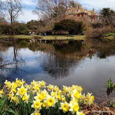 Old Westbury Gardens, #LongIsland, #NewYork