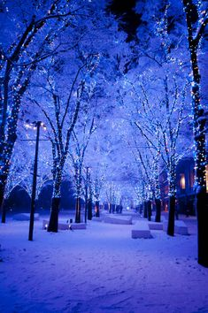 Winter Wallpaper, Nature Wallpaper, Wallpaper Backgrounds, Blue Aesthetic Dark, Night Aesthetic, Beautiful Landscape Wallpaper, Beautiful Landscapes, Blue Wallpapers, Pretty Wallpapers