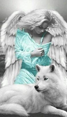 Save Gray Wolf, buy quality products and provide wolf sanctuary! - 🐺💕💃🏻Wolves and Women Images? to explore awesome wolf decor, - Fairy Pictures, Wolf Pictures, Angel Pictures, Angel Artwork, Wolf Artwork, Fantasy Wolf, Fantasy Art, Wolves And Women, Wolf Painting