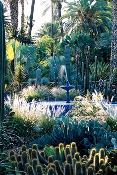 I LOVE this blue in a garden. See more images from Yves' Moroccan Oasis on domino.com
