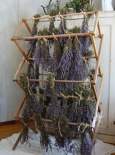 Drying herbs on an old laundry drying rack. This is exactly how I dry my herbs, works well and adds a little magical feeling to your home✨ Permaculture, Herb Garden, Vegetable Garden, Lavender Fields, Lavander, Lavender Flowers, French Lavender, Growing Herbs, Dream Garden
