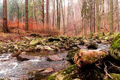 Harz 2014