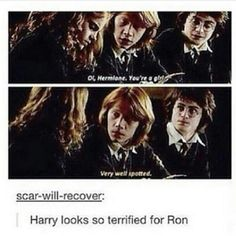 haha the look on his face:priceless. He's so thinking that Ron has just made a huge error and Hermione's going to kill him now
