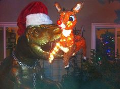 View the Dug the T-Rex Dinosaur Is The Most Epic Lawn Art Ever photo gallery on Yahoo. Find more news related pictures in our photo galleries. Funny Christmas Decorations, Tacky Christmas, Christmas Yard, Christmas Vacation, Christmas Humor, Xmas, Christmas Ornaments, Yard Decorations, Christmas Stuff