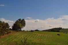 Autumn Farm Fields 2014