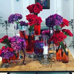 """97.6k Likes, 939 Comments - Adriana Lima (@adrianalima) on Instagram: """"🌟🎉 MY FRIENDS/FAMILY KNOWS MY ABSOLUTE LOVE FOR 🌹, THANK U FOR TRANSFORMING MY HOME INTO A WALKING…"""""""