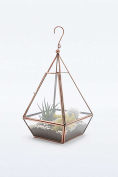 Urban Grow Mini Pyramid Terrarium in Copper - Urban Outfitters