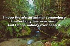 i hope there's an animal somewhere that nobody has ever seen. and i hope nobody ever sees it.