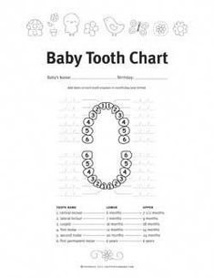 Baby Teething Symptoms and Schedule - Five Spot Green Living Baby Teething Schedule Baby Teething Symptoms, Teething Chart, Baby Teething Remedies, Natural Teething Remedies, Baby Crying Images, Baby Crying Face, Baby Teething Schedule, Teeth Eruption Chart, Tooth Chart