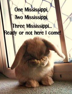 One Mississippi, Two Mississippi, Three Mississippi, ready or not here I come!