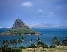 Mokoli'i, aka Chinaman's Hat ~ small basalt island located in Kaneohe Bay, accessible by kayaking, swimming, or even walking during low tide. #Hawaii
