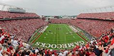 Why The University Of South Carolina Is The Best