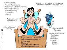 Guillain Barre' Syndrome (GBS) Memory Card: risk factors: autoimmune, r/t vaccines, proceeded by infections; progression: hours-days, minimal muscle atrophy. Symptoms initiate in lower extremities w/ symmetrical parathesia that may advance to paralysis. Pt presents w/weakness, fatigue, & ataxia. Commonly involves dysphagia, respiratory distress, & bowel/bladder dysfunction. Nursing Priority: patent airway!