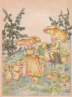 There Are Strange Things Happening Every Day (by wackystuff) Pretty Art, Cute Art, Desenho New School, Mushroom Art, Mushroom Drawing, Psy Art, Fairytale Art, Hippie Art, Fairy Art