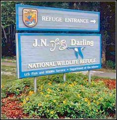 Ding Darling National Wildlife Refuge.  Tram tours, kayaking & pontoon boat rentals
