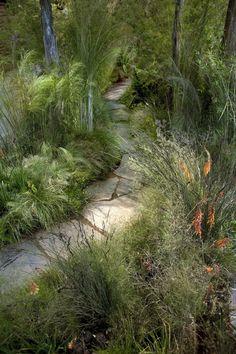 Grass gone wild. SF Garden Show Australian Garden Design, Australian Native Garden, Australian Plants, Landscaping With Rocks, Backyard Landscaping, Buchart Gardens, Garden Front Of House, Bush Garden, Natural Garden