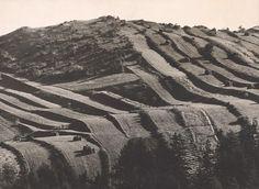 Martin Martinček - Práca stvárňuje zem I. Old Photography, World History, Black And White Photography, Romania, Poland, Countryside, Nostalgia, Earth, Landscape