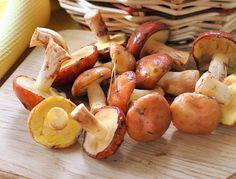 Klouzky jsou nejen chutné, ale i velmi zdravé Detox, Stuffed Mushrooms, Potatoes, Vegetables, Food, Stuff Mushrooms, Potato, Essen, Vegetable Recipes