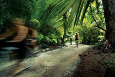 Photos Hôtel Four Seasons Resort Seychelles at Desroches Island Seychelles Islands, Broken Families, Island Resort, Romantic Getaways, Beautiful Islands, Four Seasons, The Good Place, Country Roads, Journey