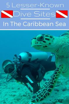 After living and travelling in the Caribbean for more than a year, I have done my fair share of diving in these waters. These are 5 of my favourite, amazing dive sites all around the Caribbean Sea!