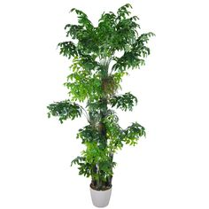 3.2M Artificial Fishtail Kwai Palm 45 Leaves Small Palm Trees, Small Palms, Fishtail, Herbs, Leaves, Plants, Herb, Plant, Braid