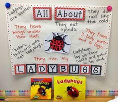 A Spoonful of Learning: Insects & Teen Numbers- Part 2 Kindergarten Homeschool Curriculum, Kindergarten Art Projects, Kindergarten Lesson Plans, Preschool Lessons, Preschool Art, Literacy, Insect Crafts, Teen Numbers, Adolescents