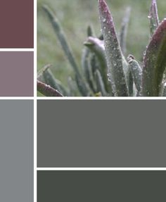 ***** PURPLES AND GREYS **** REALLY LIKE THESE HUES !!!!!