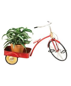 Another great find on #zulily! Red Vintage Tricycle Planter #zulilyfinds